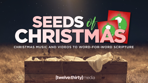 seeds of christmas