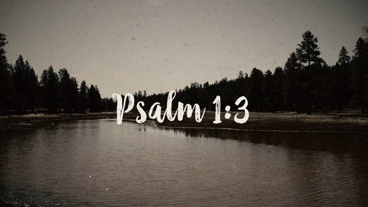 PSALM 1:3: Mini-Movie
